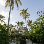 Lush gardens and palm trees