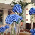 Lobby fleuri