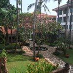 Beautiful tropical gardens surrounds the hotel