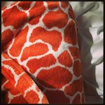 Very cool giraffe print bathrobe (yes I bought one).