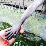 Ses mains douces...