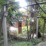 Mon p'ti bungalow au milieu de la végétation