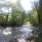 Morning on Deep Creek.