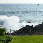 Outrigger Kanaloa: second condo ocean view