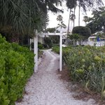 the road between cottages and the beach