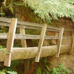hiking bridge to Merrymere waterfalls