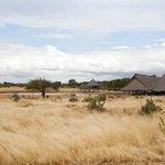 La vista dalla camera del Lodge nella Savana prenotata con Libero