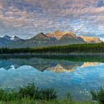 Herbert Lake, Baff Nat'l Park-Early Morning