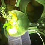 Gin tonic Mediterraneo