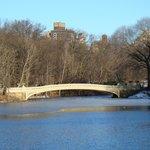 pont dans Central Park