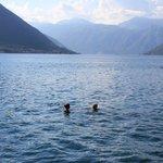 Приятно поплавать