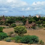 one view of the Bagan plain