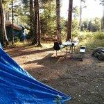 Campsite 62