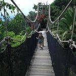 Uno de los puentes del Parque
