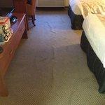 Foto de La Quinta Inn & Suites Atlanta Roswell