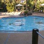 La piscine: Froide, mais sympa...