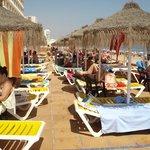 hamacas y sombrillas ,zona piscina