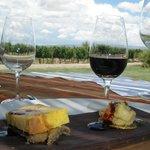 Diferentes vinos desde la gama media hasta gama alta de la bodega