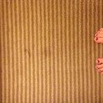 Carpet in the room