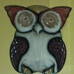 Pueo is Hawaiian for Owl