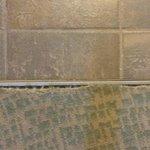 Carpet in suite