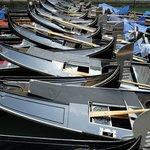 Venice July 2014