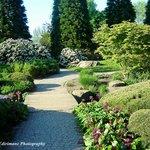 Hamburg Botanical Gardens