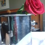 Una rosa y champán en el pack romántico