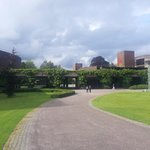 Вид на кампус