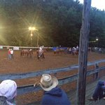 Rodeo - Labor Day 2014