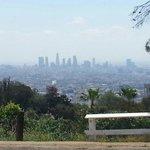 Hollywood Hills 3
