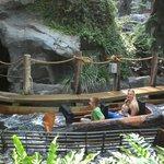 log ride fun/fear