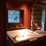 Beautiful Window and great tub