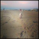 One happy pup at Dewey Beach