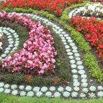 Aiuola floreale