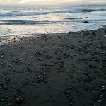 The rocks on the beach were beautiful