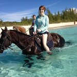 Sea-horses!