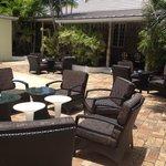 Unused Courtyard in need of shade