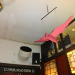 The Flying Pig!