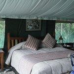Tent interior, huge bed!