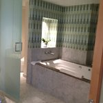 nice whirlpool/tile/and live plants in room