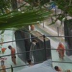 i doccioni del parco termale Negombo