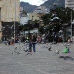 Palomas en Plaza Bolivar