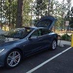 Free EV Charging!