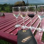 Amazing wines