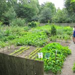 A lovely old garden.
