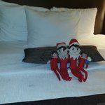 Cleaning lady fixed my daughters elves so cute!! My girls couldnt stop laughing...