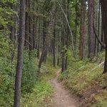 Kimberley Nature Park