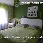 "chambre ""Chlorophylle"""