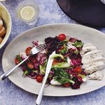 Radicchio Salad with poached chicken